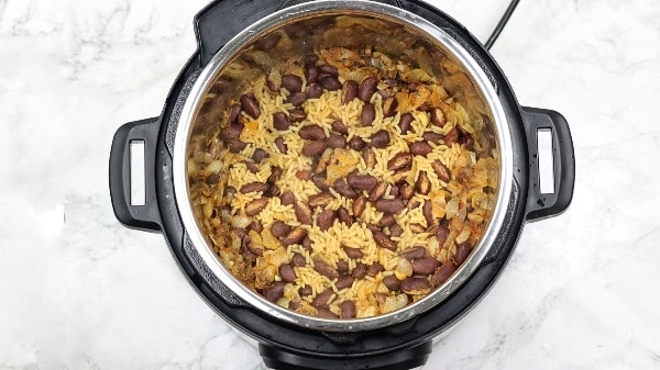 cooked meal in the instant pot.